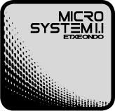 MICROSYSTEM1.1